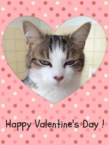 ValentineDayL