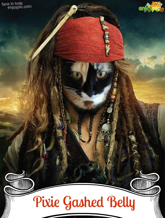 pirate P2