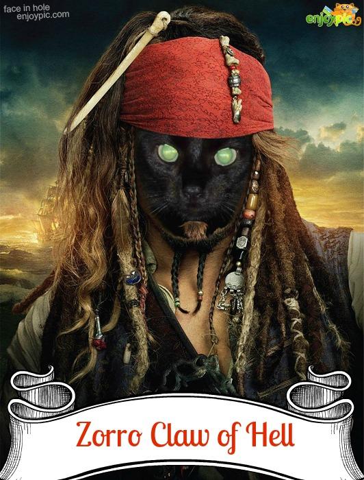 pirate Z2