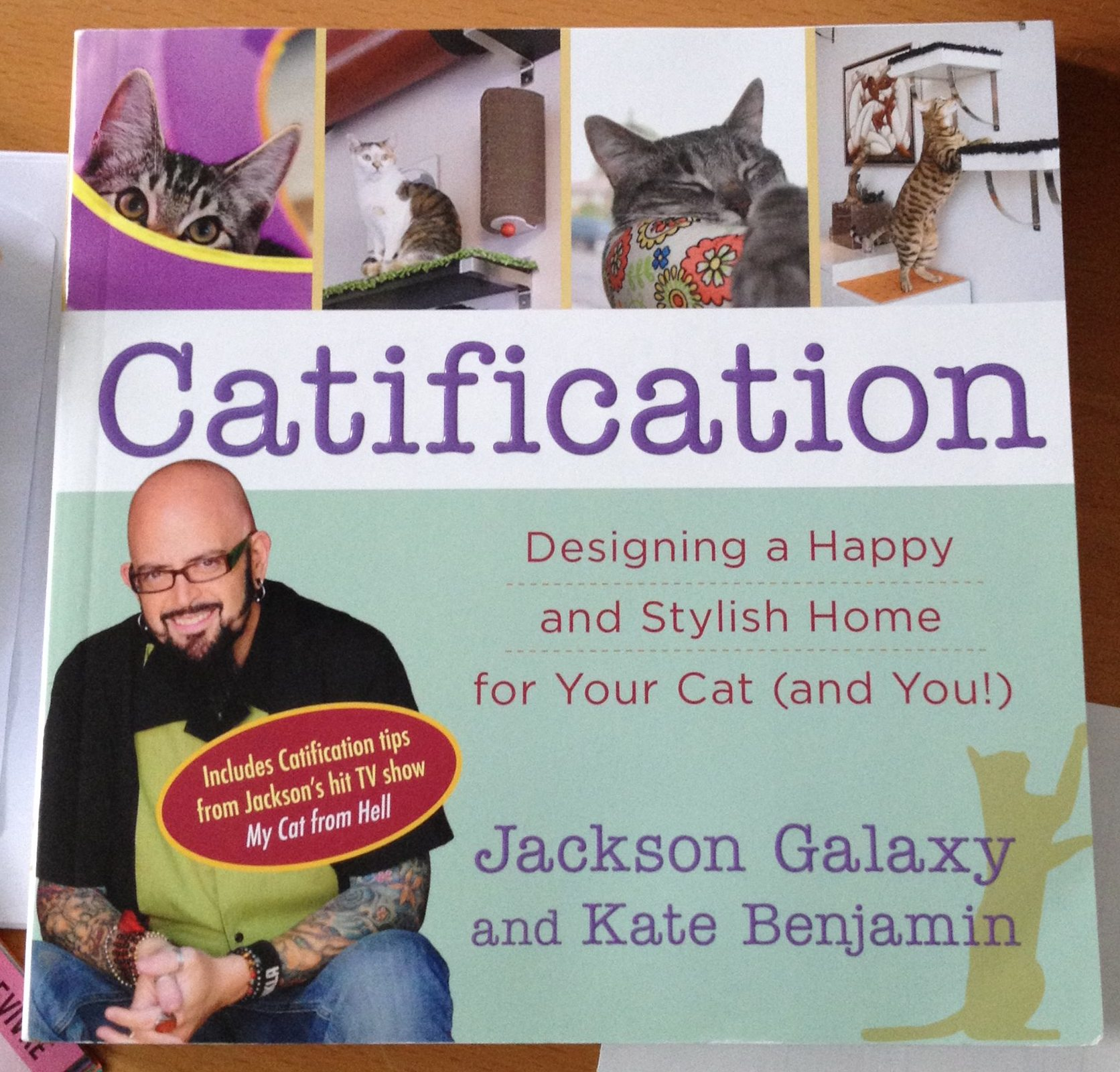 cover Catification by Jackson Galaxy