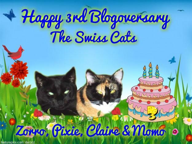 04-23-15 Swiss Cats 3rd Blogoversary