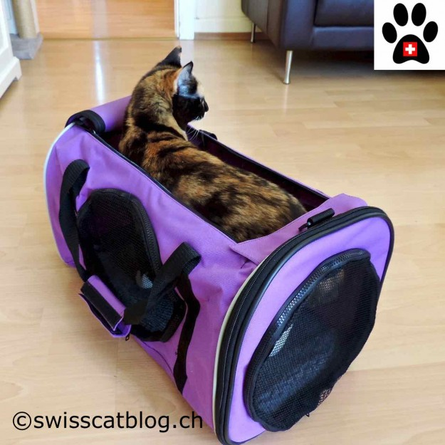 Jackson Galaxy Pet Carrier with Pixie