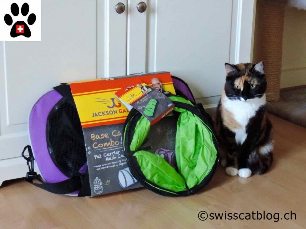 Pixie with the Jackson Galaxy Base Camp Combo