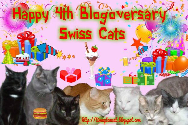 Swiss Cats 4th BlogoV