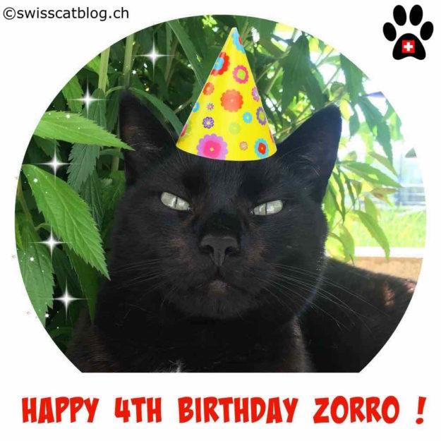 4th birthday Zorro