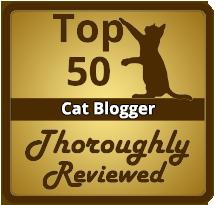 Top 50 Cat Bloggers