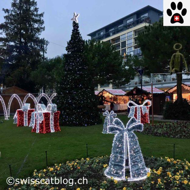 http://www.swisscatblog.ch/wp-content/uploads/2016/12/jardin-magique-2.jpg