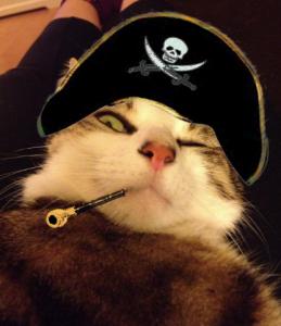 pirate Loupi