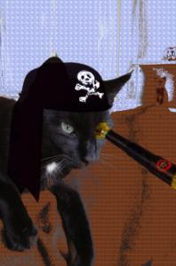 pirate Zorro