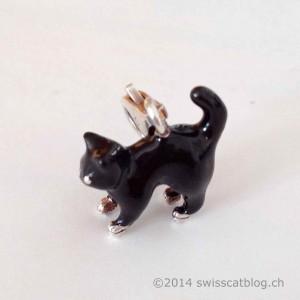 charm chat noir