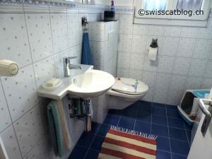 salle de bains 33