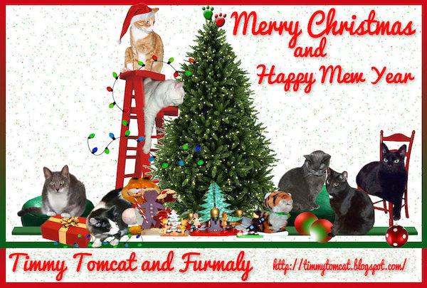 Timmy Tomcat14