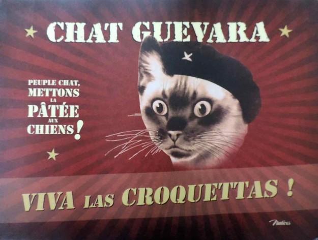set Chat Guevara