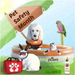 BlogPaws July15