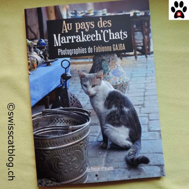 livre marrakech chats