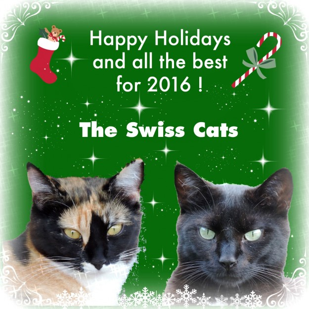 TheSwissCats2015