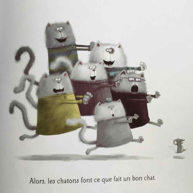 Tous les chatons courent après Harry.