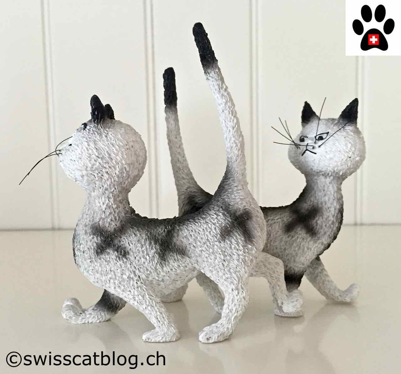 Joyeux Anniversaire Claire The Swiss Cats