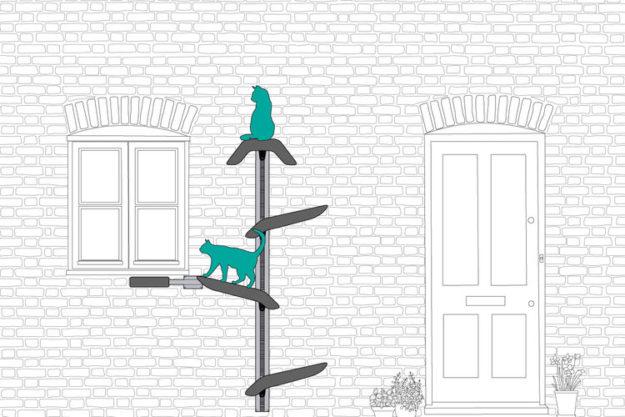 Catipilla Ladder 1