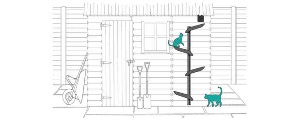 Catipilla Ladder 2