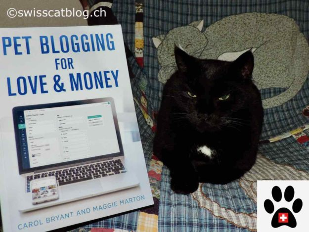 Pet Blogging for Love and Money with Zorro